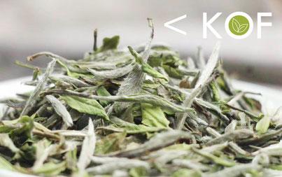Pai Mu Tan, Shou Mei, Weisser Tee