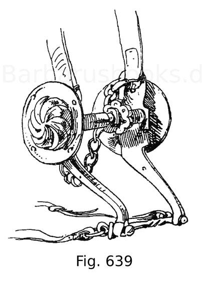 Fig. 639. Reitstange mit messingenen, gebuckelten Scheiben, zu einer Turnierausrüstung gehörig. 15. Jahrhundert.