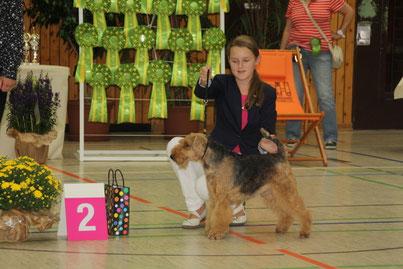 2. Platz Juniorhandlingfinale AK 1 Klubsieger Bensheim am 18.8.13 mit Henry