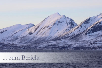 Ausflug Aktivität Tromsö Fjord Cruise Hafen schifffahrt rundfahrt safarai