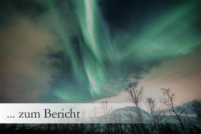 Ausflug Aktivität Tromsö Polarlichter im Minibus