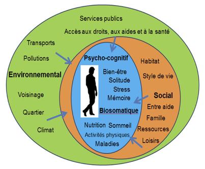 - Les déterminants de santé (Source : CESEGH) -