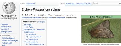Eichen-Prozessionsspinner – Wikipedia - klick mich...