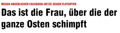 Facebook-Hetze gegen Flutopfer - Chemnitz - Bild v. 6.6.2013 - klick mich...