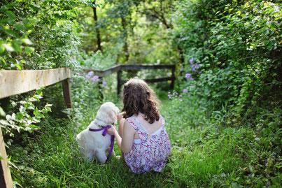 L'enfant et le chien dans le jeu
