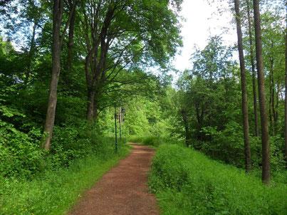 Fußweg durchs Grüne