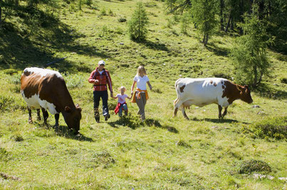 Bergferien für Familien.
