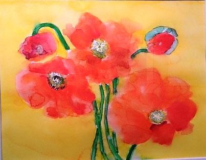 水彩画 poppy