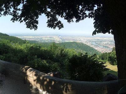 Ausblick auf Stadt und Umland. Foto: DerFloh