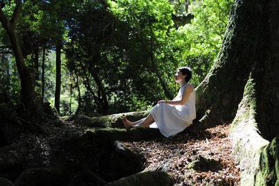 静かな森の中では素敵なひらめきがありそう