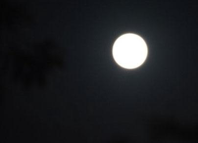 中秋の名月 18:58撮影