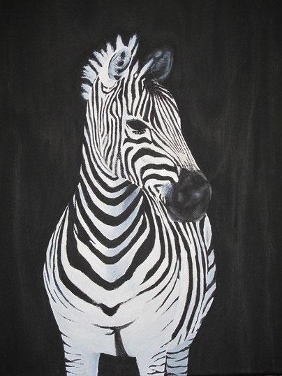 Nehmen Sie Kontakt auf: 05295/629-4515  info@zebrahv.de  Hausverwaltung in Paderborn Bad Driburg Lichtenau Bad Lippspringe mit dem Symbol des Zebras
