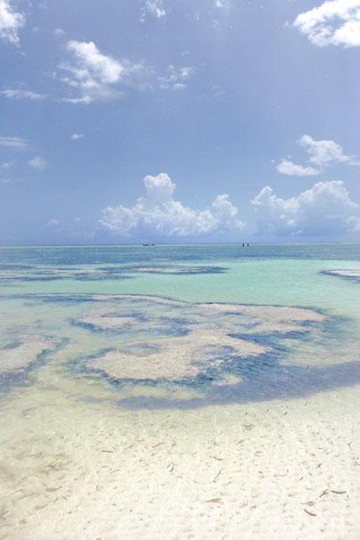 Ebbe Strand Sansibar