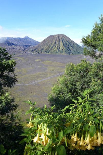 Bromo Kraterwanderung Java Indonesien