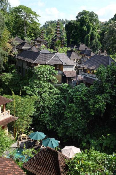 Reiseblog Ubud Bali Tipps