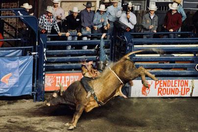 Bullriding Pendleton Roundup Rodeo Idaho