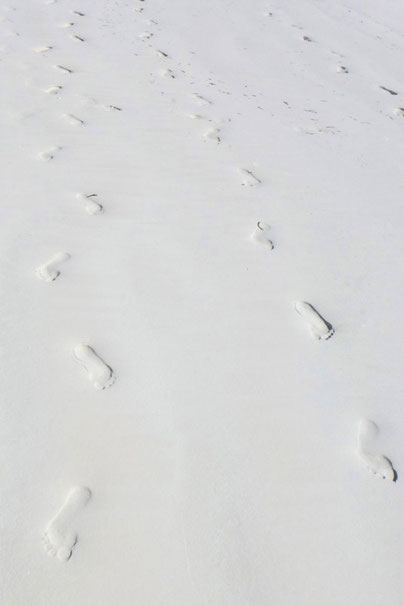 Sansibar Sand Footprints
