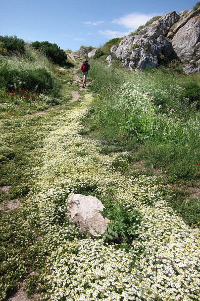 Wanderweg auf der Festung Akrokorinth Peloponnes