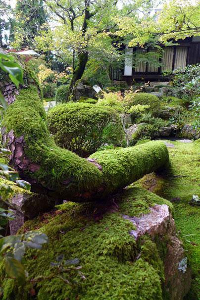Kyoto Tipp schönste Tempelgarten Nanzen-ji Tempel Konchi-in Kyoto Guide Highlights Sehenswürdigkeiten