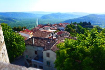 Reise zu Berg & Meer, Konobas, Wein, Olivenöl & Trüffel