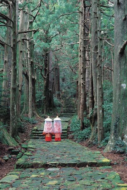Japan Nachi Tempel Wasserfall Kumano Kodo Pilgerweg Reisebericht Japan
