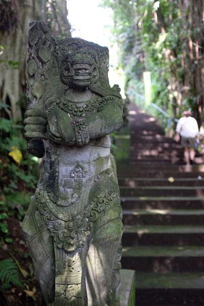 Reiseblog Ubud Bali Tour Tipps