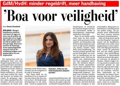 Ook meer BOA's in Den Haag