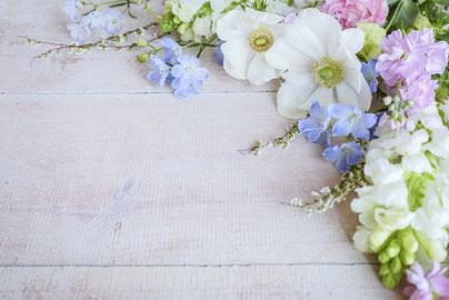 満開の八重桜。