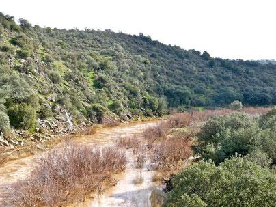Guadalmena, límite entre Ciudad Real y Jaén