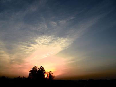 荒川サイクリング 夕陽