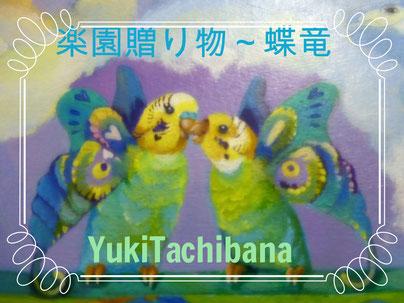 蝶竜 立花雪 YukiTachibana  楽園の贈り物~