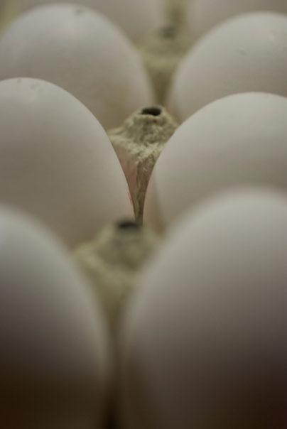 Jetzt ist schon bald Ostern und die Eier sind immer noch weiß...