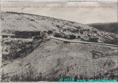 Caillettenwald und Schlucht, Bazilschlucht - am Horizont das Fort Vaux