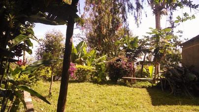 Blick in den Garten in Gonja