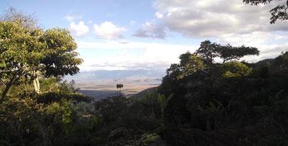 Bilck über die Weiten Tansanias von Gonja aus