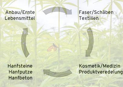 Hanf Anbau, Verarbeitung zu Lebensmitteln, CBD, Textilien und Hanfsteinen