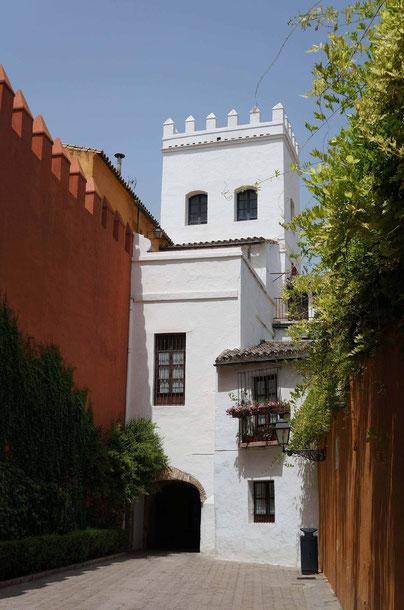 Photographie, Espagne, Andalousie, Séville, architecture, matière, Santa Cruz, couleurs, voyages, vacances, rues, médina, Mathieu Guillochon.