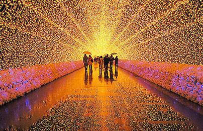 сад огней в японии