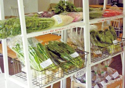 新鮮なオーガニック野菜が買える ミモレ農園マルシェ