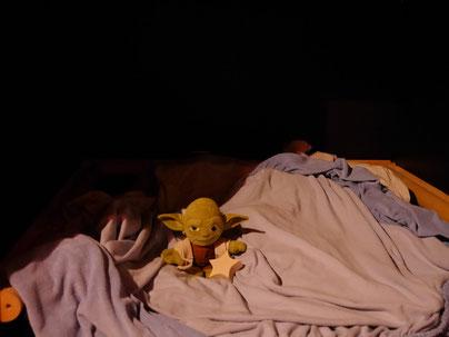 ...und Yoda hält die Sternenwacht