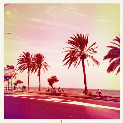Skyline Palma de Mallorca #hipstamatic