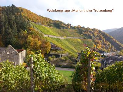 """Die Weine aus der Weinbergslage """"Mariethaler Trotzenberg"""" sind selten, da dieser Weinberg sehr klein ist. In der Regel gehören die Weine aus diesem Weinberg zu den hochpreisigen Weinen von der Ahr."""