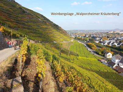 """Die Weinbergslage """"Walporzheimer Kräuterberg"""" gehört an der Ahr zu den absoluten top Lagen.  Das Ahrweindepot hält auch aus diesem Weinberg einige Weine bereit."""