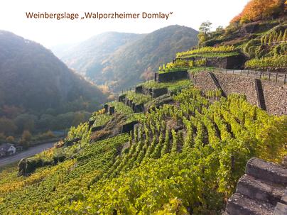 """Im Ahrweindepot findet man auch Weine aus der Weinbergslage """"Walporzheimer Domlay"""""""