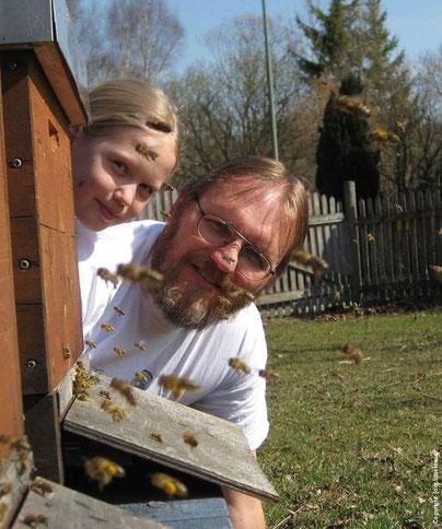 Unsere Bienen starten in den Amperauen in Olching zu ihren Expeditionen.