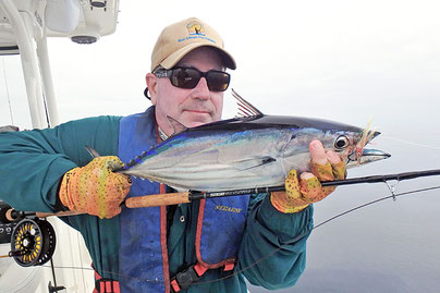 Fly Caught Skipjack