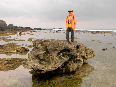 A coral boulder on Green Island, Taiwan.  The largest boulder in my project is over 10 times bigger than this (too busy to pose there)!