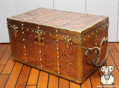 Malle a appareil photo Louis Vuitton en cuivre et laiton