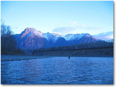 Skein River Steelhead Spey Fishing