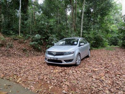 今回使ったレンタカー。後方の樹林にアロパラが多い。
